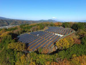 Solaranlage auf einem Berg umgeben von Bäumen