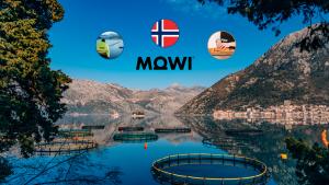 Abbildung einer Fischzucht mit Bergen im Hintergrund. Über den Bergen ist das Logo von Mowi ASA sowie die Fischzucht, die Zubereitung von Lachs und die norwegische Flagge dargestellt.