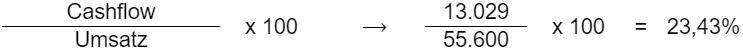 (Cashflow / Umsatz) * 100